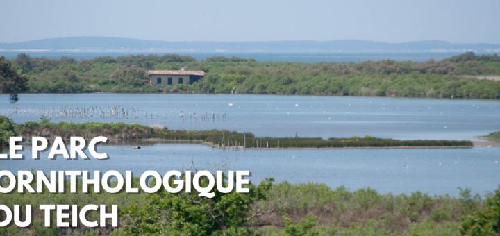 paysage du parc ornithologique